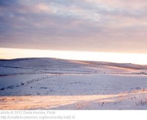 snowrise